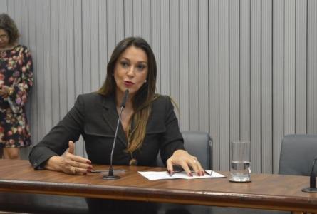 Segurança Pública discute projeto de blindagem de Rita Passos